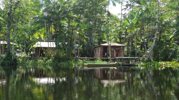 Amazon Rainforest Protection